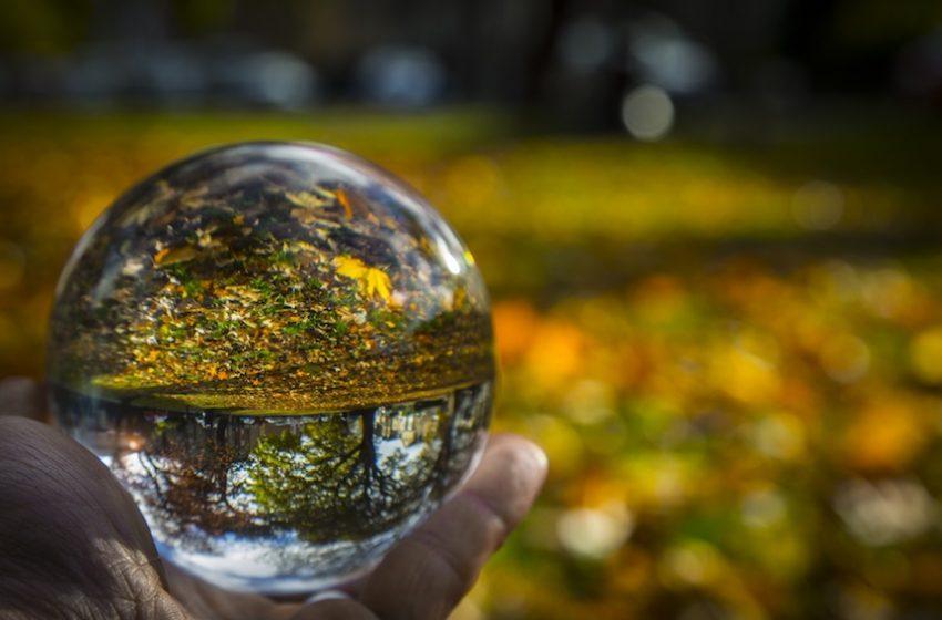Studi legali e fatturati: come d'autunno sugli alberi le previsioni…